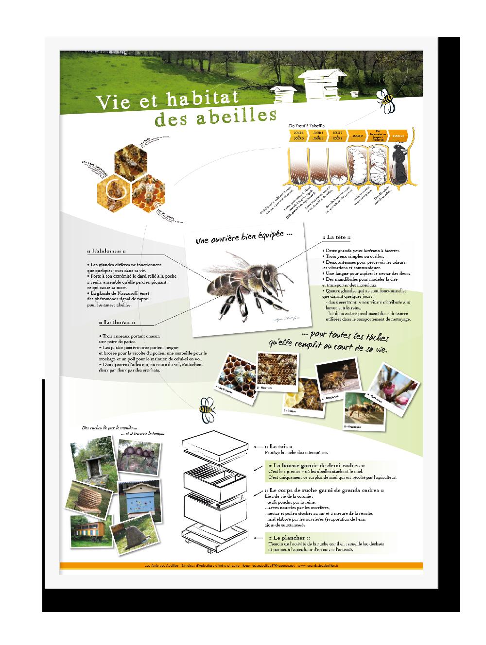syndicat-apicole-37-2