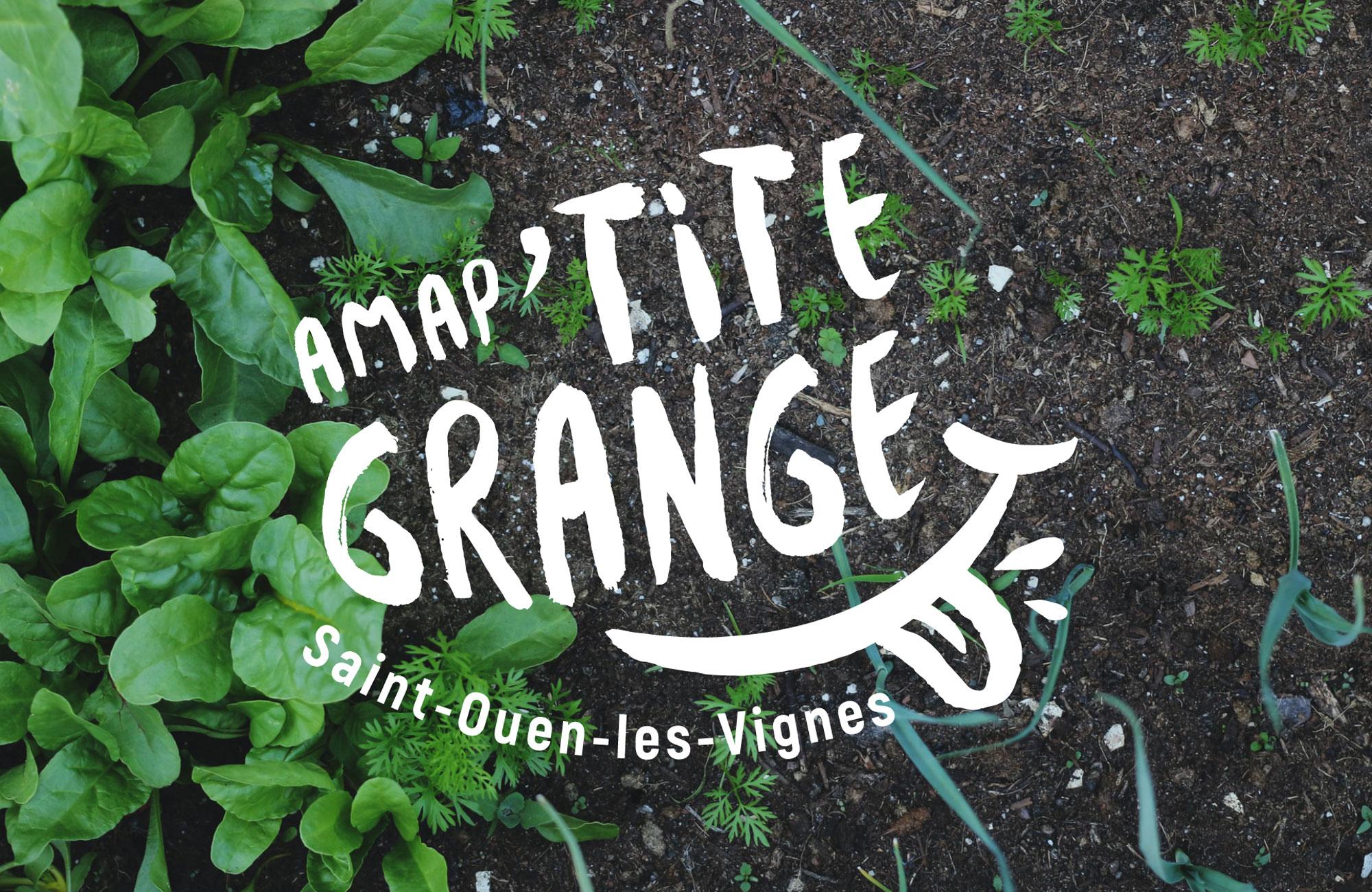 Logo Amap'tite Grange en blanc sur un fond de terre et de plantes
