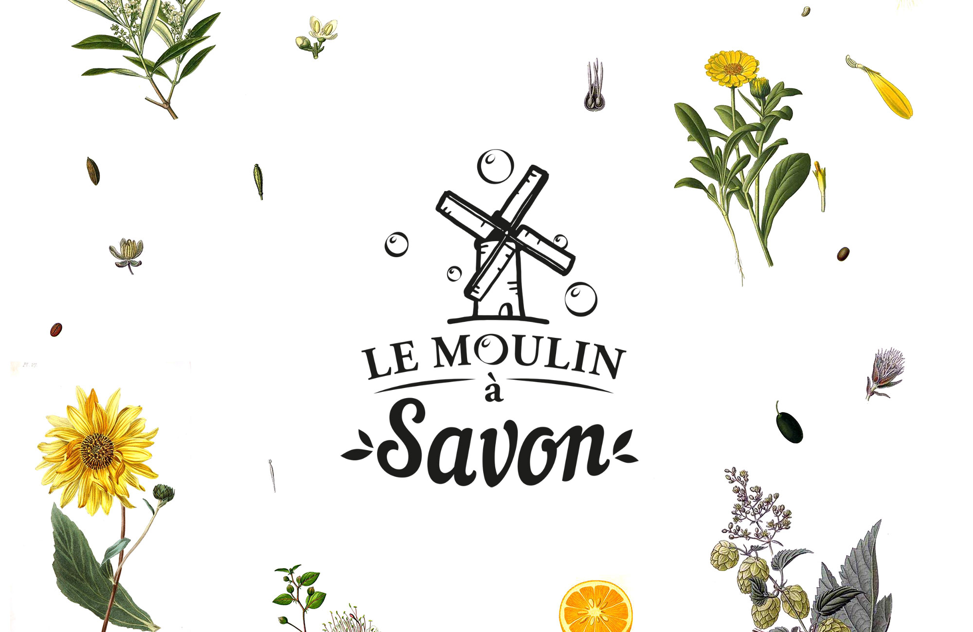Loog du Moulin à savon sur un fond de planche botanique